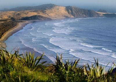 New Zealand's Northland